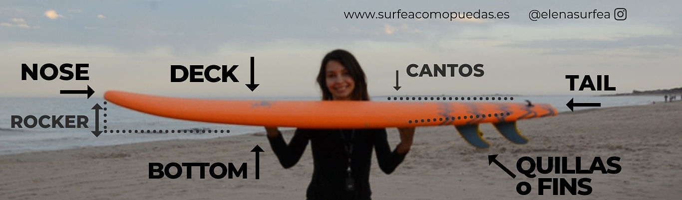 Anatomía de una tabla de surf